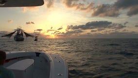 Garnelenboot an der Dämmerung stock video
