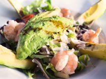 Garnelensalat mit Avocado Stockfotografie