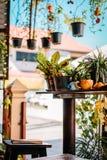 Garnering av en restaurang i Chiang Mai Härliga gröna växter överallt royaltyfria bilder