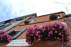 Garnering av ett Venedig hus med petuniablommor på forntida fönster fotografering för bildbyråer