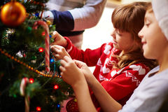 Garnering av julgranen arkivbild