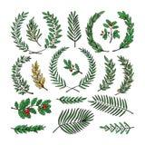 Garnering för filialen för kransvektorträdet virvlad wreathen härolden med olivgröna sidor och den virvlade flaureldekorillustrat stock illustrationer