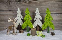 Garnering för jul för landsstil träi äpple - gräsplan och whi royaltyfria foton