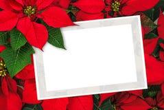 Garnering för julstjärna för julhälsningkort med kopieringsutrymme Royaltyfri Fotografi