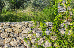 Garnering för stenvägg Royaltyfri Fotografi