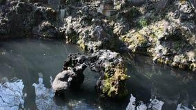 Garneringdesign i dammet av japansk stil för trädgård