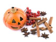 garneringen hallowen Royaltyfri Foto
