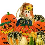 garneringfall halloween arkivfoto