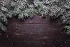 Garneringsammansättning för jul och för nytt år Den bästa sikten av päls-trädet förgrena sig på träbakgrund med stället för ditt arkivbild