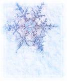garneringsnowflake Arkivbild
