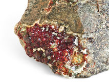 Garnet. Royalty Free Stock Photography