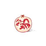 Garnet fruit pomegranate sketch draw isolated over Stock Photo