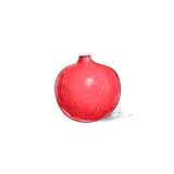 Garnet fruit pomegranate sketch draw isolated over Royalty Free Stock Images