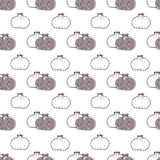 Garnet fruits vector seamless pattern Stock Images