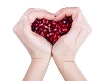 Garnet, grains, pomegranate seeds  the form of Stock Photos