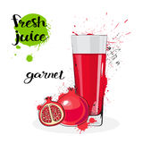 Garnet Juice Fresh Hand Drawn Watercolor Fruits And Glass On White Background. Vector Illustration Stock Photography