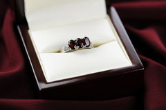 Garnet Ring Velvet Background Stock Photos