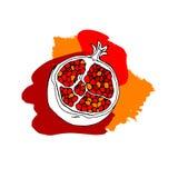 Garnet vector fruit pomegranate illustration food sweet natural ripe. Garnet vector fruit pomegranate illustration food sweet natural Royalty Free Stock Photos