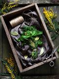 Garni bouquet fresh spring herbs bunch in rustic style Royalty Free Stock Photo