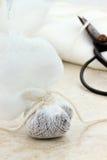 Garni oder Teebeutel Stockbild