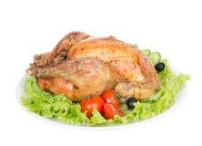 Garnished asó el pollo de la acción de gracias en una placa Imagen de archivo libre de regalías
