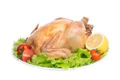 Garnished asó el pollo de la acción de gracias en una placa Fotos de archivo libres de regalías