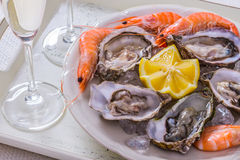 Garnished oysters shell, jumbo shrimp with lemon on ice Stock Image