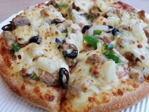 Pizza. The Garnished pizza with close-up Royalty Free Stock Photography