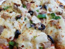 Pizza. The Garnished pizza with close-up Royalty Free Stock Photos