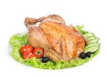 Free Garnished Roasted Thanksgiving Chicken On A Plate Stock Photo - 32984760