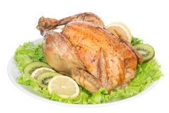 Garnished roasted thanksgiving chicken on a plate decorated with Royalty Free Stock Image