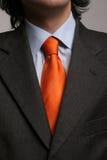 garnitur w krawat Zdjęcia Royalty Free