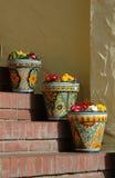 garnki kwiatów Zdjęcia Stock