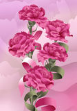 Garofani della Rosa Fotografia Stock Libera da Diritti