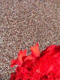 Garofano rosso sul fondo di jackstone Fotografia Stock