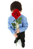 Garçon avec Rose Photos stock