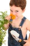 Garçon de jardin Image libre de droits