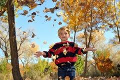 Garçon jouant dans des lames d'automne Photographie stock libre de droits