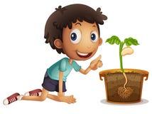 Garçon plantant la graine dans le pot Image stock