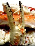 Garra do caranguejo cozinhado Fotos de Stock
