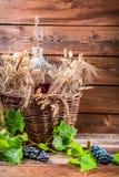 Garrafão completamente do vinho tinto na adega Foto de Stock