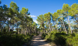 Garraf Royalty Free Stock Images