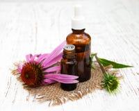 Garrafa com óleo da essência com echinacea roxo Fotos de Stock Royalty Free