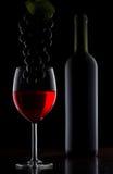 Garrafa com vinho branco e vidro Imagem de Stock