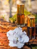 Garrafa da árvore do agarwood do óleo contra a casca Fragrâncias árabes do perfume do attar do oud ou do óleo do agarwood na mini foto de stock royalty free