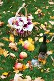 Garrafa da aguardente, do vidro, das maçãs e do ramalhete Fotos de Stock
