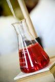 Garrafa da química Fotografia de Stock Royalty Free