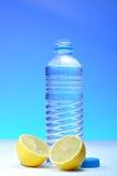 Garrafa de água e limões plásticos Fotografia de Stock Royalty Free