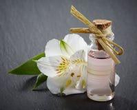 Garrafa de óleos essenciais dos termas Foto de Stock