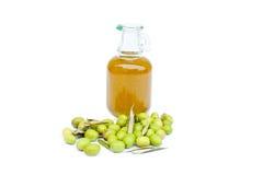 Garrafa de azeite com azeitonas Fotos de Stock